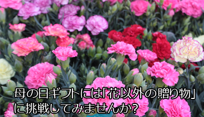 母の日ギフトには「花以外の贈り物」に挑戦してみませんか?