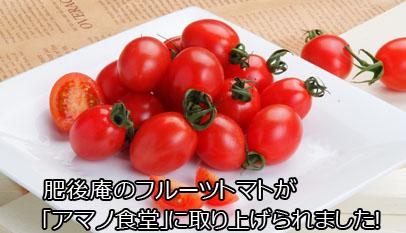 肥後庵のフルーツトマトが「アマノ食堂」に取り上げられました!